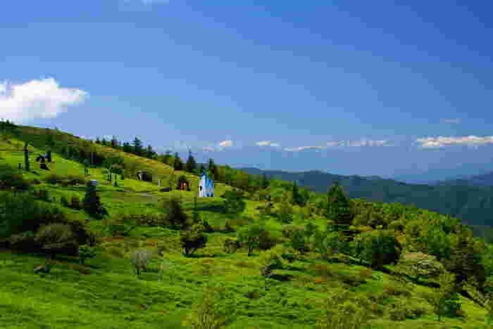 標高2034mの美ヶ原最高峰・王ヶ頭をはじめ、標高2000m付近に広がる一帯を美ヶ原高原と呼んでおり、長野県のほぼ中央に美ヶ原高原は位置しています。
