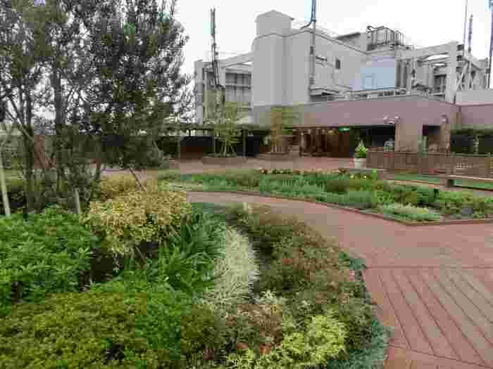 JR東日本系の会社が運営するショッピングビル「アトレ恵比寿」の屋上に、「恵比寿グリーンガーデン」という庭園があります。