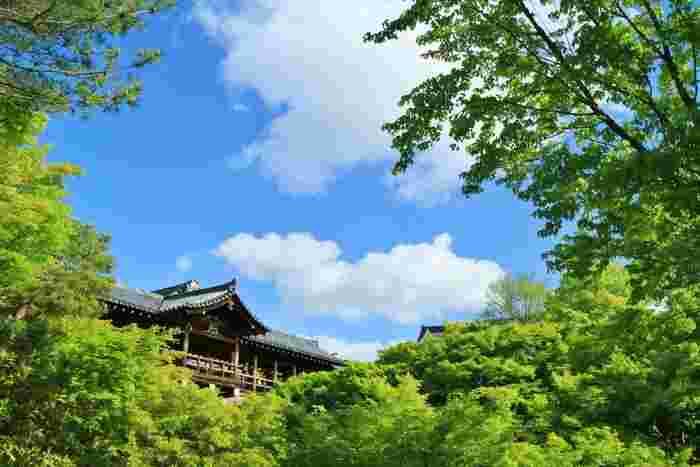 奈良の東大寺と興福寺、2つの寺から一文字ずつとって名付けられた東福寺。秋には、通天橋からの眺めが「紅葉の海」とよばれるほどの真っ赤な葉に彩られる東福寺も、夏には二千本の楓が織りなす涼やかな青もみじの海に包まれます。東西南北、個性的な4つの庭園が配された方丈庭園も見どころです。