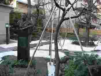 緑豊な中庭には中村不折のブロンズ像があります。春になると桜が咲き、隠れた花見スポットになっています。