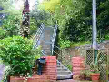 入口からは長く急な階段をのぼって行きますよ!この階段だけでもとってもいい運動になります。