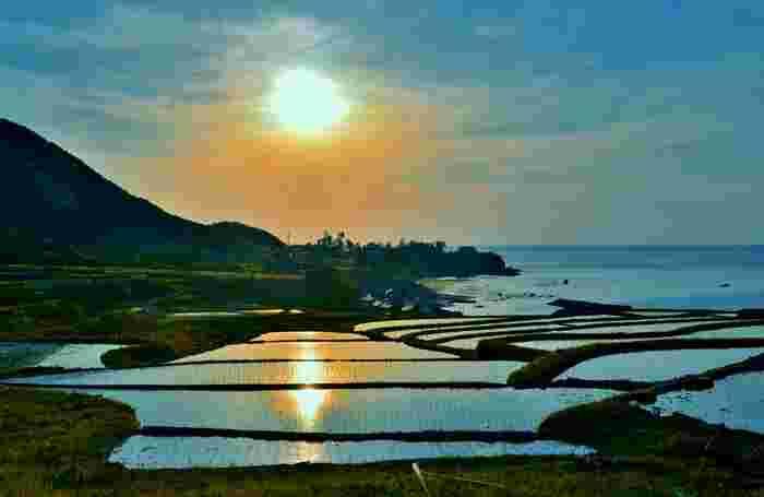 丹後天橋立大江山国定公園の一部に位置する袖志の棚田は険しい山と日本海に挟まれた棚田です。約400枚の水田が敷かれた扇状の傾斜地と日本海が織りなす景色は絶景そのものです。