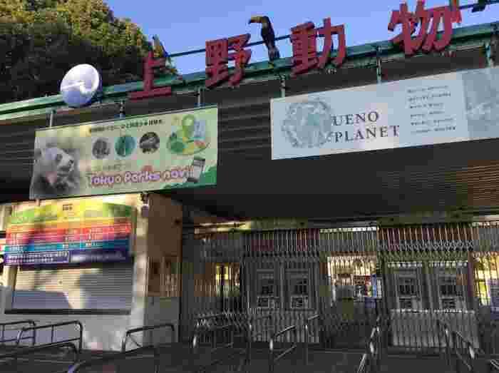 動物園の歴史を知るのも、もっと動物園が好きになるポイント! 例えば、パンダで有名な「東京都恩賜上野動物園」。実は日本に最初にできた動物園なのだそう。それぞれの動物園の歴史を知っておくと100倍楽しめそうです。