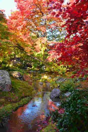 天龍寺から徒歩8分ほどのところにある「宝厳院」。こちらも庭園が美しいお寺です。