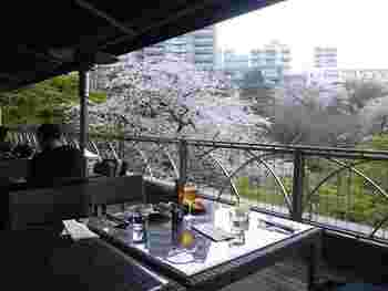 都内でも有数の結婚式・宴会場「八芳園(はっぽうえん)」にあるフレンチレストラン。園内の桜がよく見えるようにと計算されつくした景色が広がります。