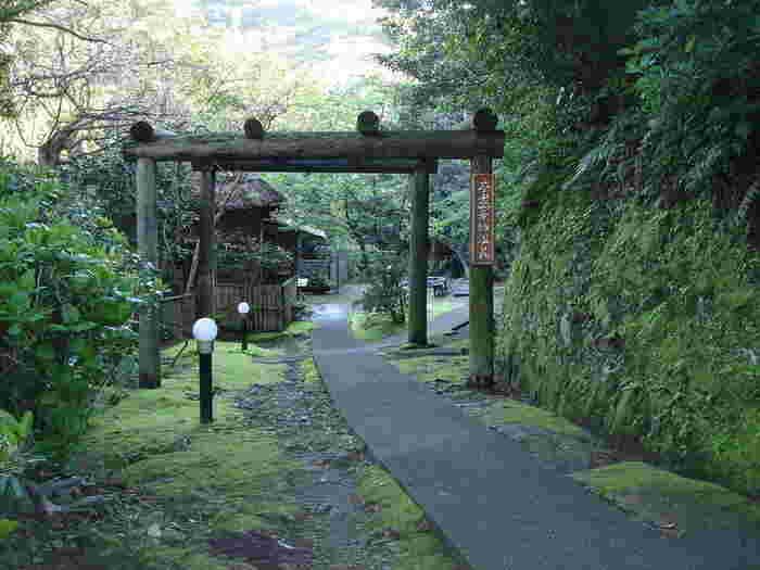 山と海に囲まれた千葉県館山にある、やすらぎの村 不老山薬師温泉は、まるでジブリの映画に出てきそうな幻想的な雰囲気が印象的。
