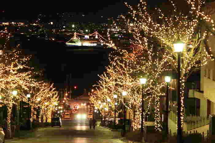 木々の葉が色づき地面に落ちたかと思えば、ちらほらと雪が降り始める・・・。北海道の11月から1月の期間は、晩秋から厳冬に季節が変わる幻想的な季節といってもいいでしょう。 函館では独特な地形を生かしてイルミネーションが点灯されたり、姉妹都市から送られるモミの木を使った巨大なクリスマスツリーが飾られたりなど、寒さが厳しくても楽しめるイベントがたくさん用意されています。この時期は観光客はもちろん、函館市民にとっても楽しみな季節なんです。