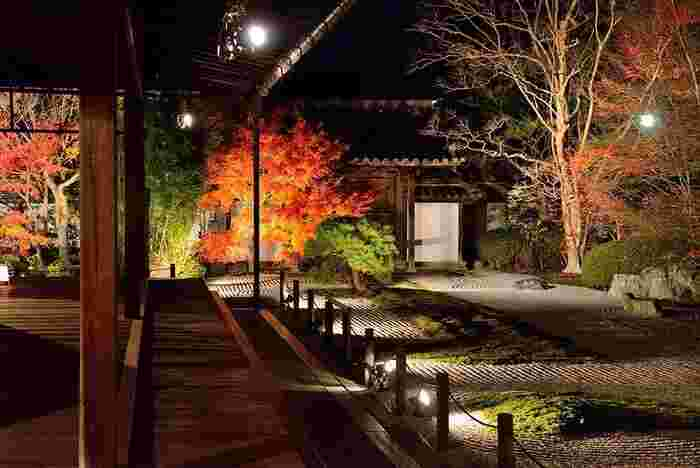 書院の中から南庭を眺めるのは、紅葉時のライトアップの特別期間のみ。天授庵では、昼夜で拝観ルートが異なり、夜間公開時には、昼間に入れない書院と本堂から、ライトアップされた幻想的な紅葉の庭園を眺めることができます。  ※◆※参考:夜間ライトアップ:2017年11月15日(水)~11月30日(木) 17:30~21:00(受付:20:45まで)