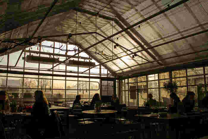 ローゼンダール・ガーデン(Rosendals Trädgård)という広大な庭園の一角には温室があり、庭園を眺めながらカフェで一服したり、雑貨ショップや花屋さんでショッピングを楽しんだりできます。カフェでは、庭園で育てられた有機野菜を使った料理も食べられます。