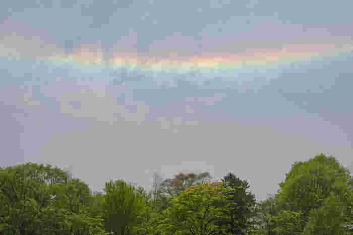 しかし彩雲は雲に含まれる水滴と日光によって起こる現象なので、地震に直接結びつくとは考えにくいのではないでしょうか。