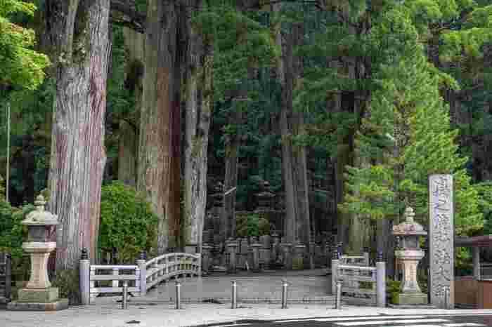 弘法大師御廟に向かう参道の入り口となっている大渡橋は、「一の橋」と呼ばれています。一の橋を渡ると、高野山の高野山の二大聖地(壇上伽藍と奥の院)の一つ、「奥の院」に入ります。ここからは、弘法大師御廟へと約2キロメートルの参道が続いています。