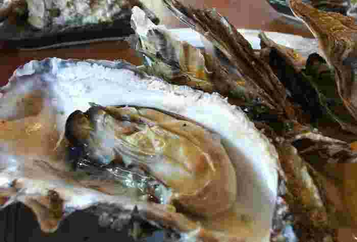日本有数の牡蠣の産地、宮城県。松島・石巻などが有名ですが、とくに松島は400年以上の牡蠣養殖の歴史があるそうです。牡蠣小屋がたくさんあり、焼き立ての牡蠣をおなかいっぱい満喫できます。その焼き方はダイナミックそのもの。ジューシーなおいしさに、毎年通いたくなりますよ。
