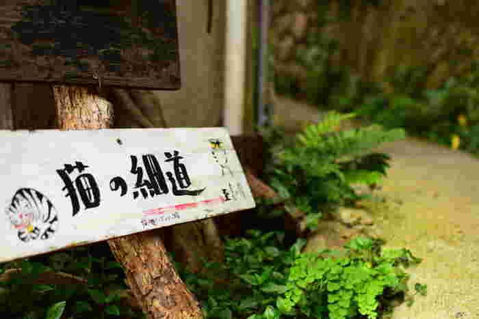 絵師の園山春二さんが尾道の町に放った「福石猫(ふくいしねこ)」が集まるパワースポットで、「猫の細道」と呼ばれています。