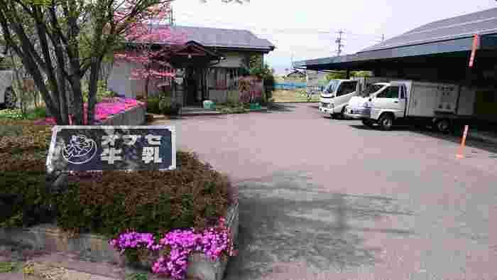 信州、長野県の北東に位置する小布施町で、昭和25年より半世紀以上、地元の方々に愛され続けている「オブセ牛乳」。