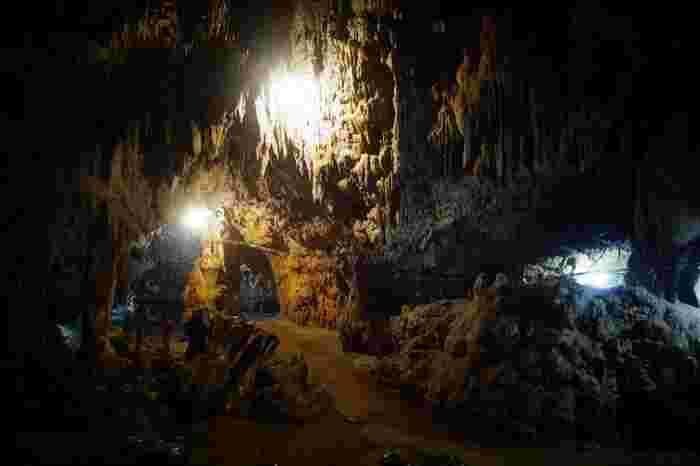 「赤崎鍾乳洞(あかさきしょうにゅうどう)」は、石灰岩が地下水に浸食されてできた洞窟。小さな鍾乳洞ですが、圧倒されるような造形としっとりとした艶めきは、自然が作り出す芸術。箇所や形状によって名前が付いているのが面白いですよ。