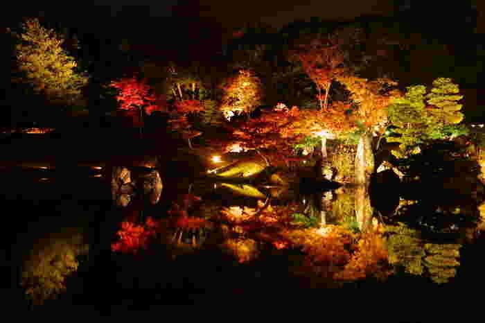 玄宮園では紅葉シーズンになると夜間のライトアップが行われます。ライトを浴びて光輝く樹々を波ひとつない静かな池の水面が鏡のように映し出す様は神秘的で、いつまで眺めていても飽きることはありません。