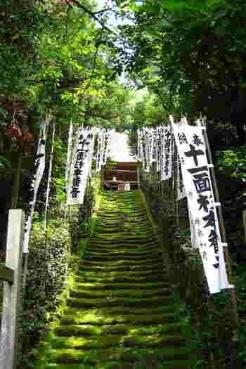 杉本寺は鎌倉で一番古いお寺で宗派は天台宗、創建は平安時代以前まで遡ります。御本尊は十一面観音で平安時代に造られてました。本堂最奥に大切にお祀りされていますが、本堂に上がってお姿を垣間見る事ができます。観音様の前での静謐で厳かな雰囲気は心の中から無駄なものを落としてくれるような、そんな力を持っているように感じます。 高台にあるので境内からの眺めは最高です。