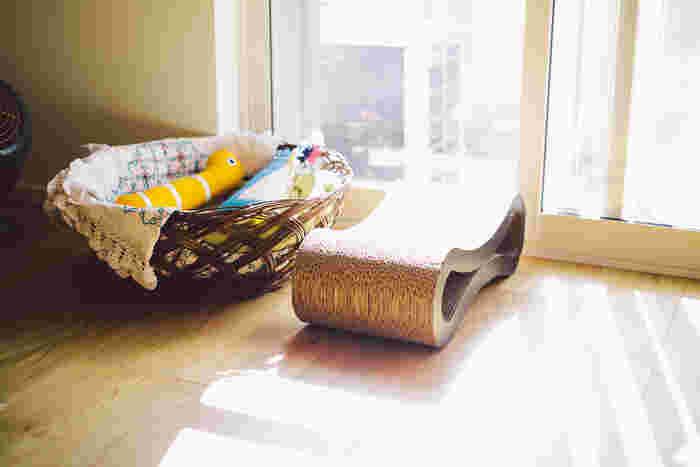今の家で暮らし始めてから飼っている愛猫・キャスパーくんのスペース。恥ずかしがり屋さんのため、取材時は姿を見せてくれませんでした…。