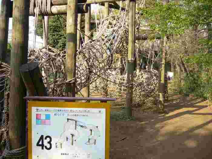 """神奈川・つくし野の「フィールドアスレチック横浜つくし野コース」は""""つくし野アスレチック""""と呼ばれたくさんの人に愛されてきたフィールドアスレチック。つくし野の森に難易度がどんどん上がる50ものアスレチックが設置され、子供を中心に人気を集めています。"""