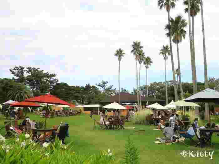 園内はどこも南国ムードを味わえるしかけがいっぱい。アジアンガーデン「R-Asia」は亜熱帯の植物や花々が咲くガーデンカフェ。あちこちにハンモックもあって、まったりのんびり島時間を満喫できます。