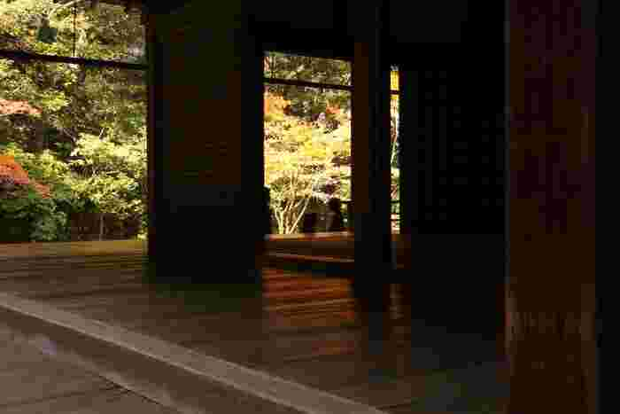 方丈の西側から南側にかけて広がる「方丈の庭」は、楓が多く、紅葉の季節は取りわけ美しく、杉や檜の緑とのコントラストが鮮やか。素晴らしい景色が楽しめます。  水路閣の上にひっそりと佇む「南禅院」は、南禅寺の隠れた名所。ゆったりとした一時を過ごすのにお勧めの寺院です。