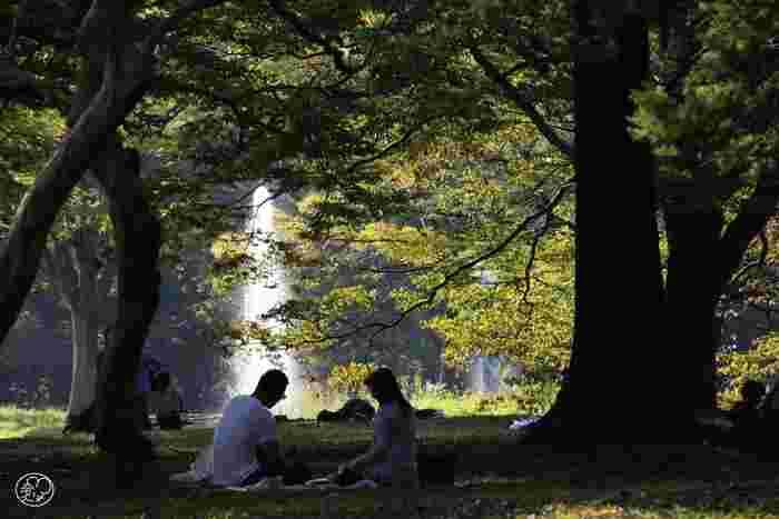 この周辺には、こだわりのおしゃれカフェがたくさんあることでも有名。カフェでゆっくり食事やスイーツを楽しむのも良いですし、晴れた日にはテイクアウトをして公園でピクニックするのもおすすめです。