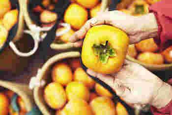 果物のおいしさをそのままに。「堀内果実園」の魅力をご紹介♪