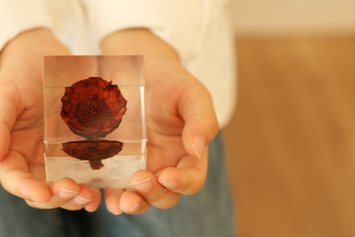 植物の美しさをアクリルキューブに封入したオリジナル雑貨「sola cube(ソラキューブ)」。職人さんにより、ひとつずつ丁寧に作られています。