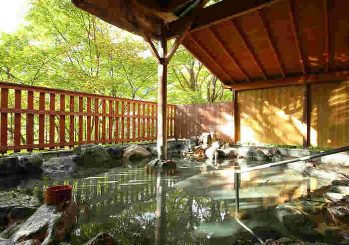 鬼怒川温泉のお湯は、アルカリ性単純温泉で、お肌にもやさしくやわらかな泉質を誇ります。神経痛や五十肩、疲労回復などに効果があるとされています。湯あたりもなめらかなので、小さな子どもや赤ちゃんとも安心して一緒に入ることができます。