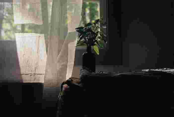 朝の新鮮な空気は心地良いものです。まずは起きた時に、部屋の空気を入れ替えましょう。朝起きた時の部屋は、睡眠中の呼吸によって二酸化炭素が充満しています。清々しい空気を取り込むことで体内に酸素が送られるので、心も体もリフレッシュできますよ♪