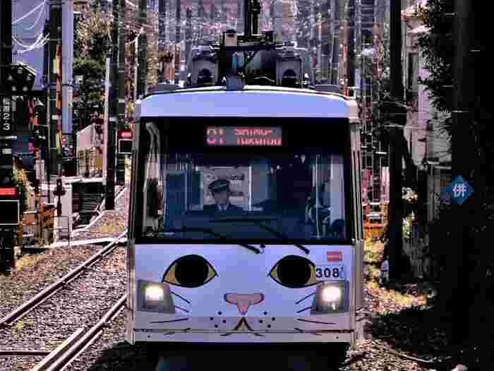 下高井戸から利用できる「東急世田谷線」は、休日のんびり街歩きをしたいときにぴったり。三軒茶屋、豪徳寺、松陰神社前などの人気スポットに、気軽にアクセスできます。
