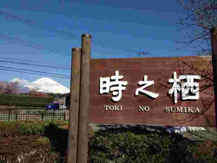 静岡県御殿場の「御殿場高原 時之栖(ときのすみか)」は広大なエリアに宿泊施設や温泉、グルメなどが集まった施設です。ファミリーやカップル、おひとりでもゆっくりくつろげます。