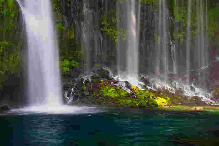 こちらも世界遺産にも登録されている静岡の白糸の滝(しらいとのたき)。高さ約20m、幅約150mの岸壁から、白い絹糸のように幾筋もの水が流れ落ちていく優美な滝です。そしてこの水は、富士山の雪解け水なんだそうです。