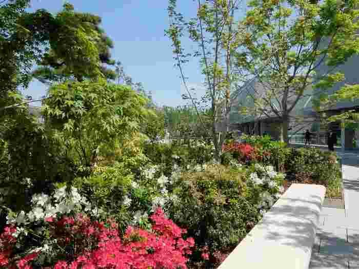 植物も多数植えられていて、季節を感じることができるのも魅力です。ベンチも多いので、ちょっと休憩したい時にぴったりの場所です。7:00〜23:00まで開放されています。