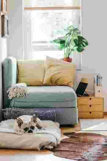 また、ソファを背もたれにして、床に座って過ごしたい場合もローテーブルは便利です。 パソコンを開いたり、読み書きするのにちょうどよい高さになりますよ。  目安としては、一般的なソファの高さを40cmとして、ローテーブルの高さは45cm前後がいいでしょう。 ソファテーブルを動かすシーンが多いなら、ひとりで持ち運びしやすい軽さを選びたいですね。