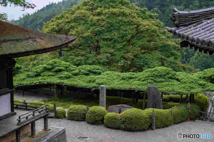 京都市西京区大野原に善峯寺は、11世紀初頭に建立された寺院です。応仁の乱によって、一度は伽藍が焼失してしまったものの、江戸時代になって再興され、現在の姿となりました。
