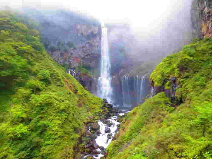 どうどうと勢いよく流れ落ちる凄まじい滝の迫力を味わいたいなら、日本三大瀑布のひとつ、日光の華厳の滝(けごんのたき)がオススメ。中禅寺湖の水が約97m下に流れ落ちていく様子は必見です。