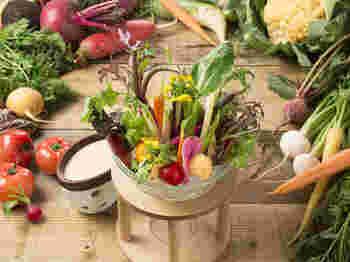 地元の野菜がふんだんに使った農園野菜のバーニャカウダは、このように美しい盛り付け* インスタ映えして、テンションが上がりますね。普段なかなか口にする事がない珍しい野菜もいただくことができます。