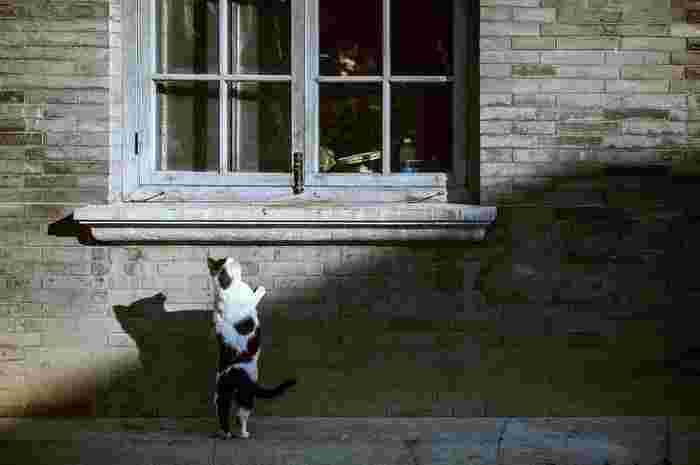 Photo by Bing Han on Unsplash