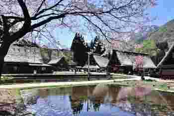 4月下旬頃。桜が丁度見頃。残雪の山々と、桜咲く《管沼集落》の風景。