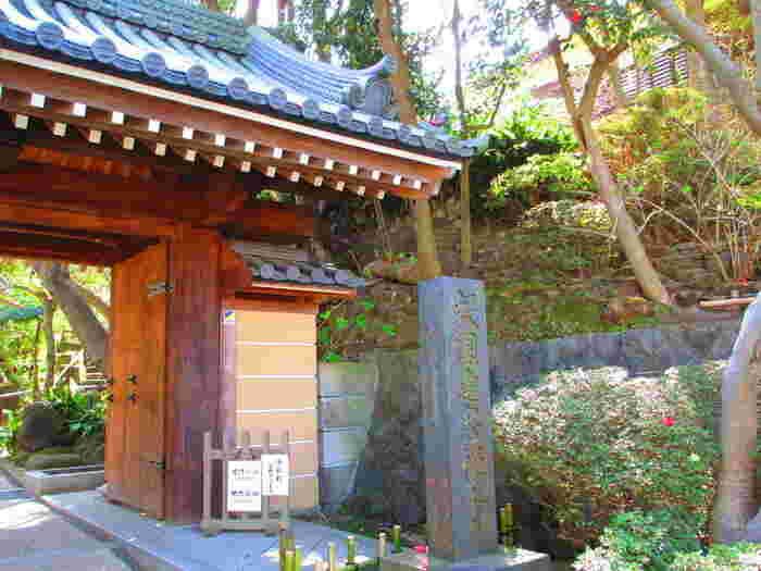 竹林が見事な「報国寺」は、美しい緑に囲まれながらお抹茶をいただけることでも有名です。鎌倉駅からはバスで7分、浄明寺バス停で降りて徒歩3分の場所にあります。駅からは少し遠いですが、美しい竹林を見てみたいと外国人観光客も多く訪れるのだとか。