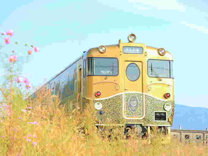 黄金色に輝く車体に細やかな装飾が美しい「或る列車」。明治時代にアメリカのブリル社に発注したものの当時は活躍できなかった「九州鉄道ブリル客車(通称『或る列車』」)が再現されたました。クラシカルな列車はハートや星の可愛いモチーフも散りばめられていて、車内では極上スイーツを楽しむことができます。ロマンチックな列車で、ちょっと贅沢な女子旅をしてみませんか?
