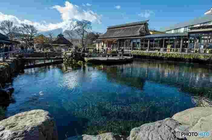 富士山でろ過された清く澄んだ水が湧き出る、湧水群です。透明度の高い池を魚が泳ぐ様子は、まるで空中を泳いでいるかのような幻想的な景色です。