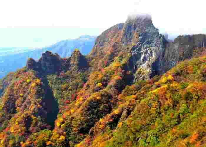四季折々で美しい姿を見せてくれる根子岳ですが、晩秋の美しさは傑出しています。山肌を覆う落葉樹が鮮やかに彩り、山全体が錦に包まれたような姿となります。