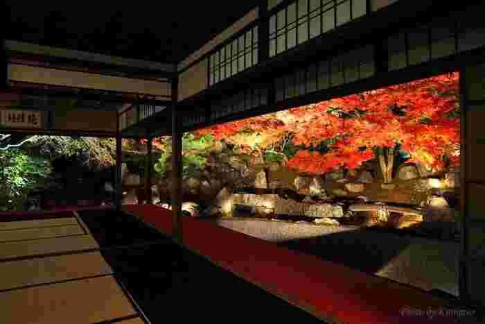 紅葉の時期には夜間特別拝観として、高台寺と共にライトアップがされます。2019年は10月25日から開催予定で、例年12月の上旬頃まで開催されます。