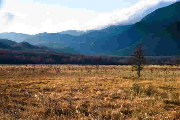栃木県の奥日光に位置する戦場ヶ原は、標高1390メートルから1400メートルの高原に位置する約400ヘクタールの面積を誇る湿原です。「戦場ヶ原」という変わった名前の由来は、かつて山の神がこの地で中禅寺湖をめぐって争ったという神話に由来しています。