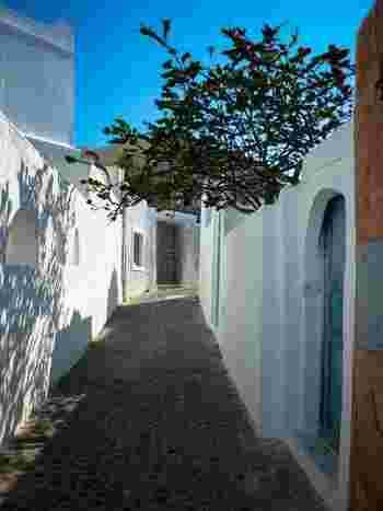 真っ白い壁が連なるこんな道を、ゆっくり散歩したいですね。ギリシャの美しい青い海、白い建物、景色は日常を忘れさせてくれます。憧れのギリシャに、今年は思い切って出かけてみましょう。