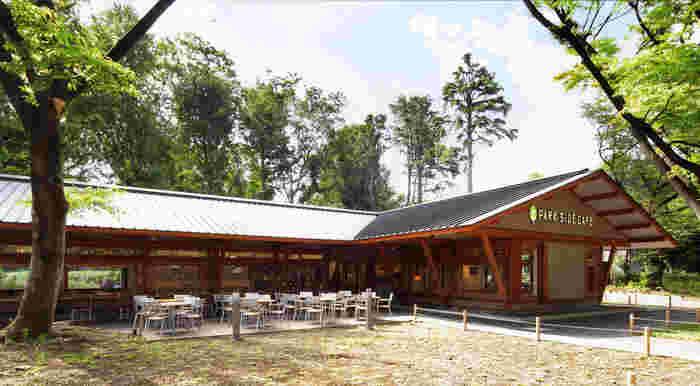 上野公園をブラっとしてからにもオススメなのが、公園内にある「PARK SIDE CAFE(パークサイドカフェ)」。