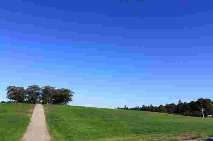 """全ての施設が森と一体化しており、墓地というよりは、""""また亡くなった方々に会いに来ることができる森""""というイメージ。夏季(7月~9月)の日曜日は、無料のガイドを受けることもできますよ。心洗われる、建築と自然の見事な融合の地を訪れてみませんか?"""
