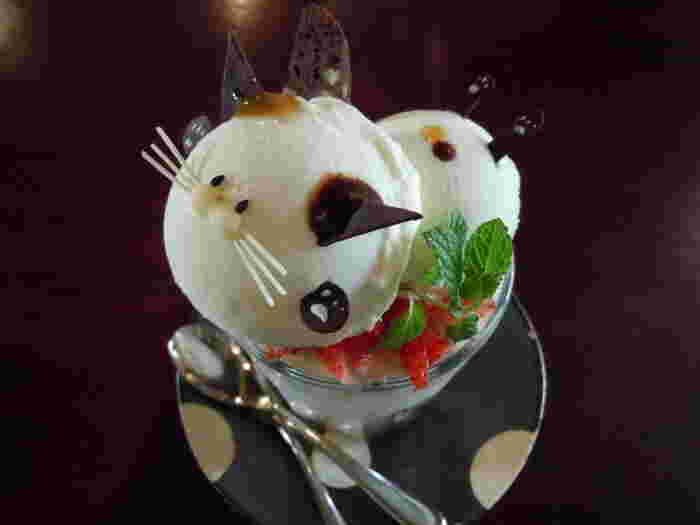 こちらの名物は「にゃんこパフェ」。なんともつぶらな瞳で見つめてくるので、食べにくいそうです。他には、小さなにゃんこがそっと覗いているお抹茶パフェやシフォンケーキもおすすめなのだそう。